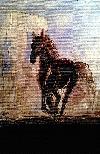 - cal în noapte -  _ http://www.laurapoanta.ro/Poze/carti/Cal_2012.jpg